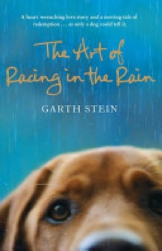 The Art of Racing in the Rain - Calf-Binding cover