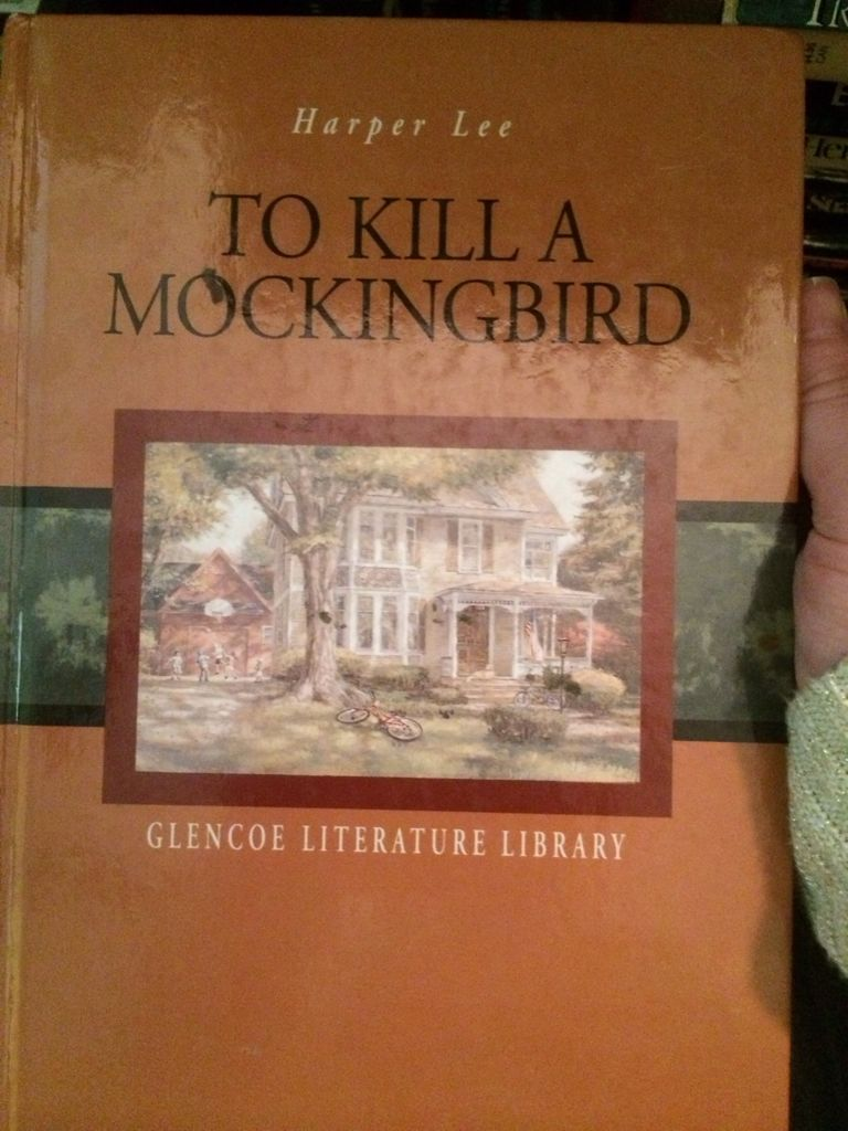 literary analysis of the novel to kill a mockingbird To kill a mockingbird literary conflict man vs man man vs self man vs society police ewell vs boo radley at the conclusion of the novel, ewell goes.