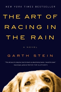 The Art of Racing in the Rain - eBook cover