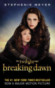 Breaking Dawn - Paperback cover