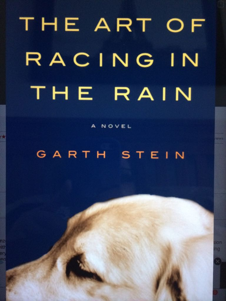 The Art of Racing in the Rain - Paperback cover