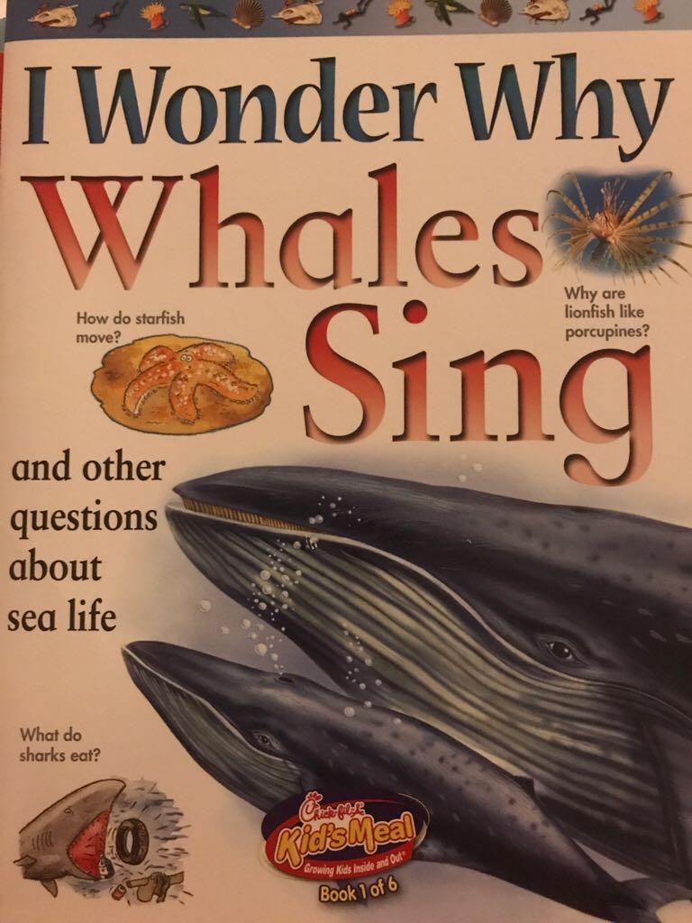 I Wonder Why Whales Sing  -  cover