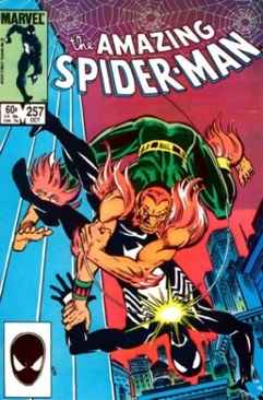 Amazing Spider-man, The - 257 cover