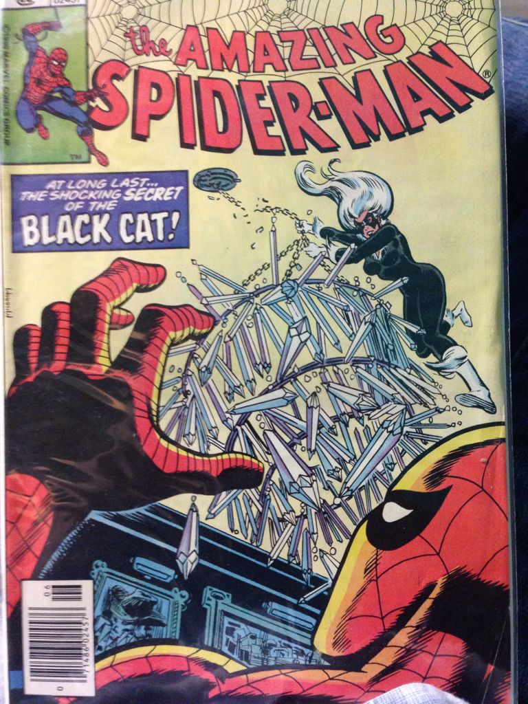 The Amazing Spider-man - 205 cover