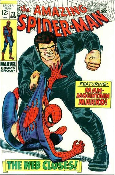 The Amazing Spider-man - 73 cover
