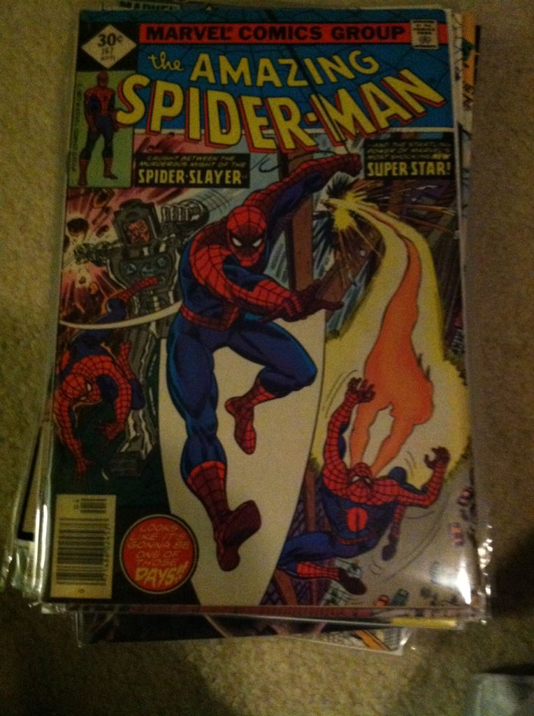 The Amazing Spider-man - 167 cover