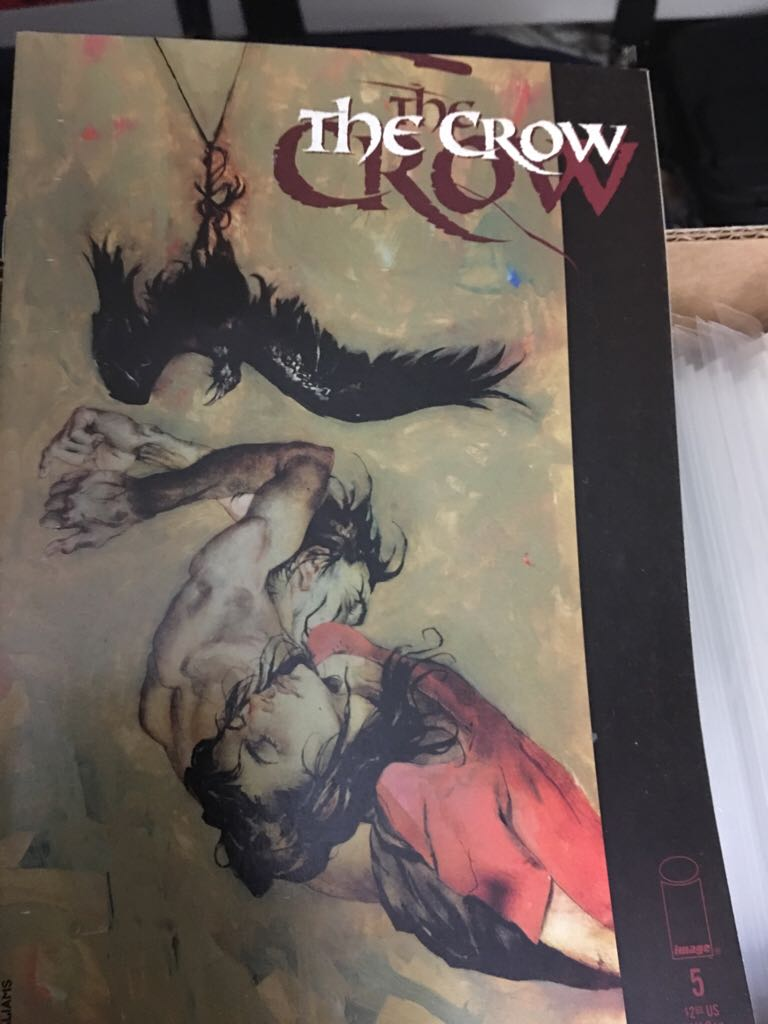 The Crow - 5 cover