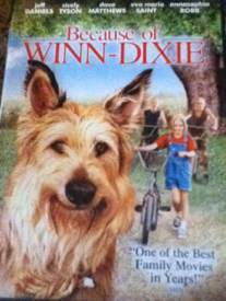 Because of Winn-Dixie -  cover