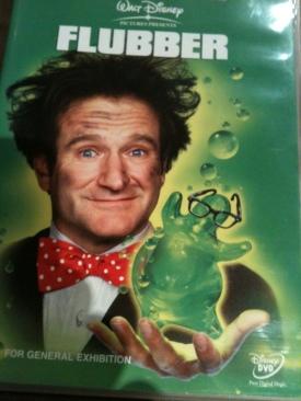 Flubber - DVD cover