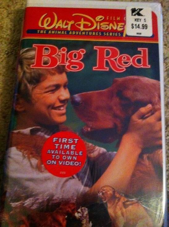 Amazoncom Clifford The Big Red Dog Volume 1 Kel
