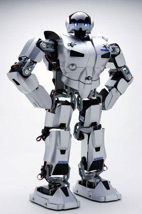 Robots -  cover
