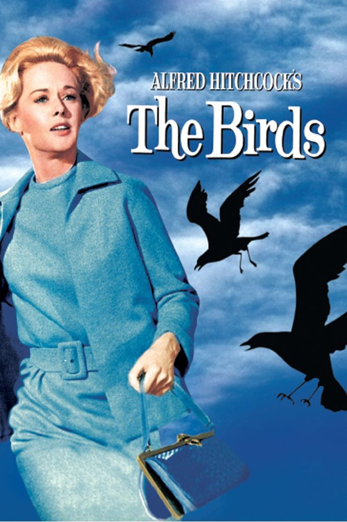The Birds -  cover