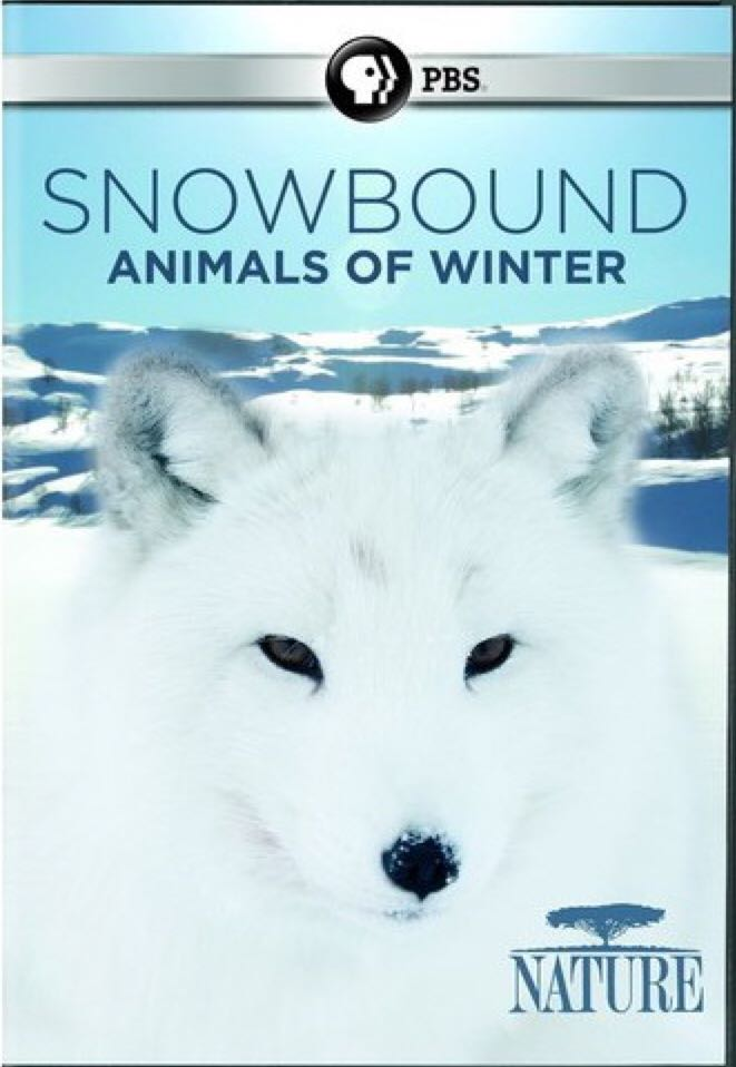 Snowbound -  cover