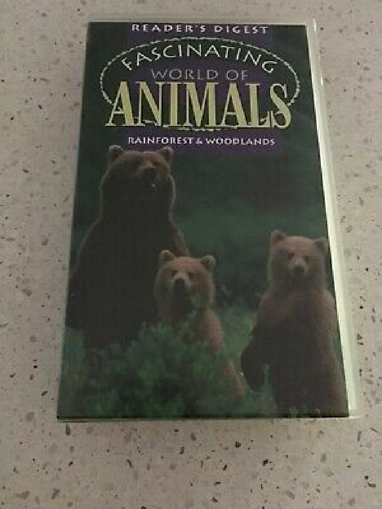 Fascinating World Of Animals Bears -  cover