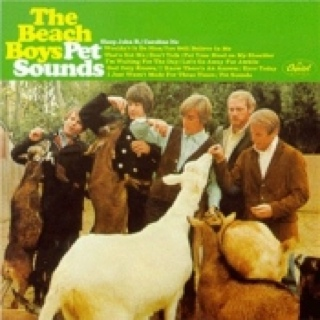 Pet Sounds - DVD-A cover