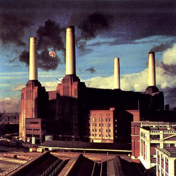 Pink Floyd - Animals - 12
