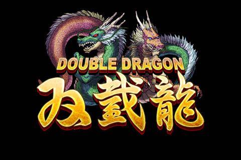 Double Dragon - 3DS eShop cover
