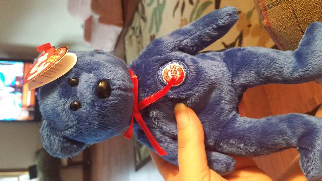 Dusty Beanie Baby front image (front cover)