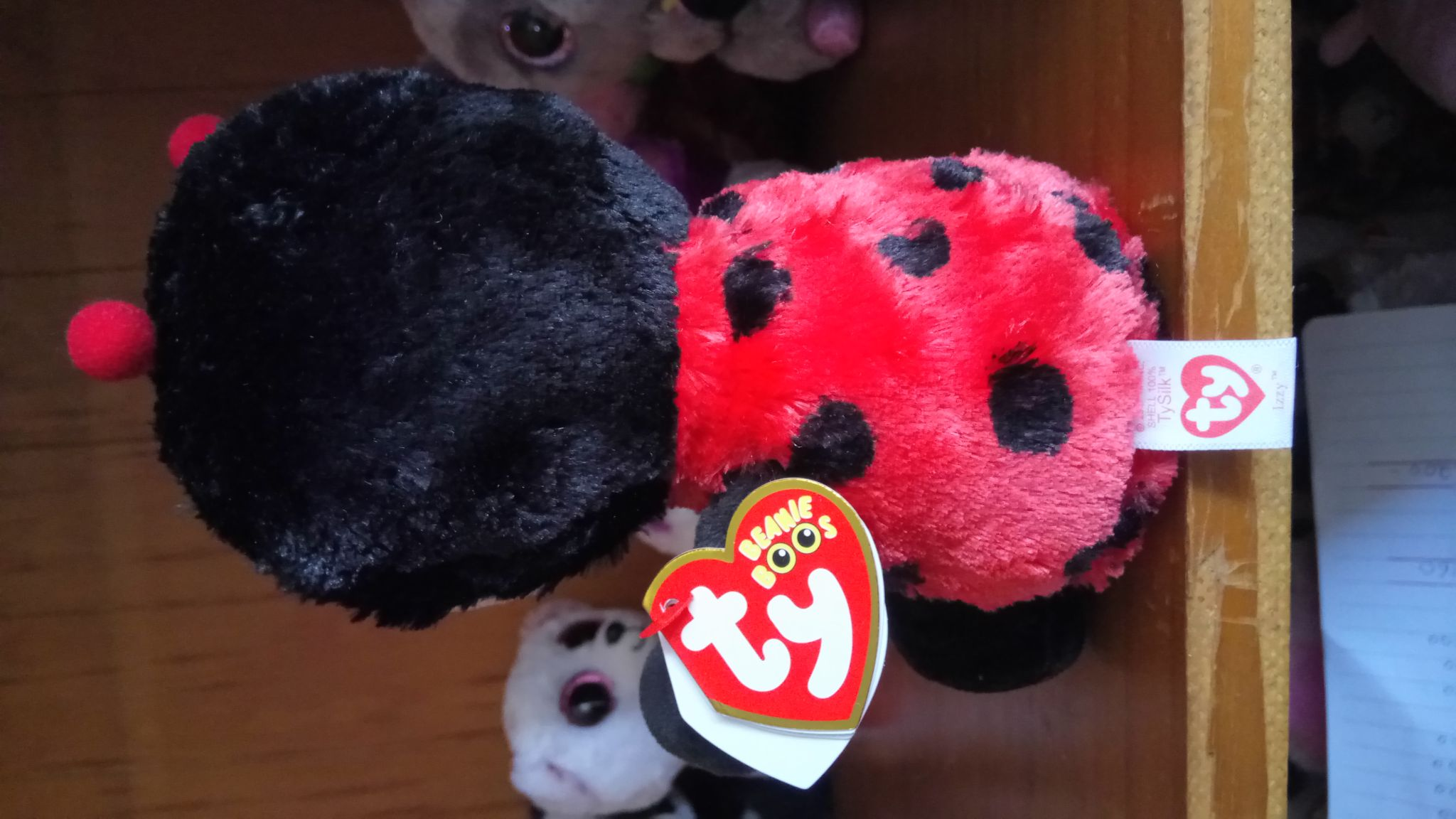 Izzy The Lady Bug Beanie Baby - Red back image (back cover, second image)