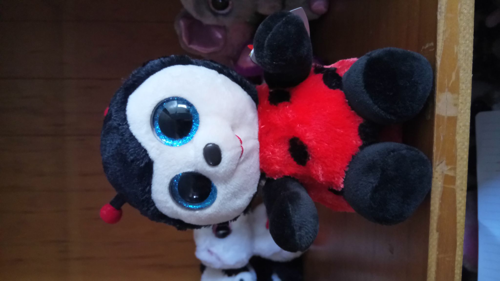 Izzy The Lady Bug Beanie Baby - Red front image (front cover)