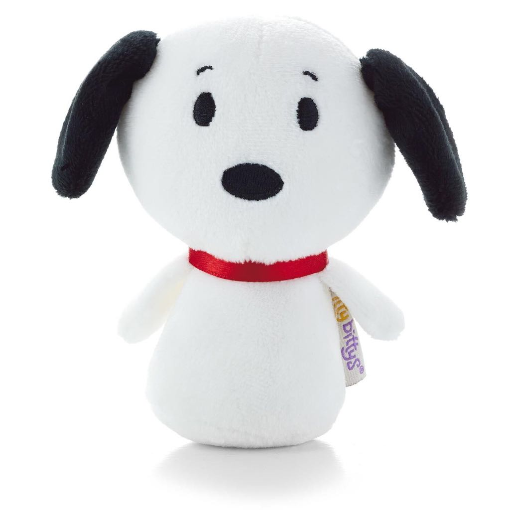 Snoopy: itty bittys Beanie Baby front image (front cover)