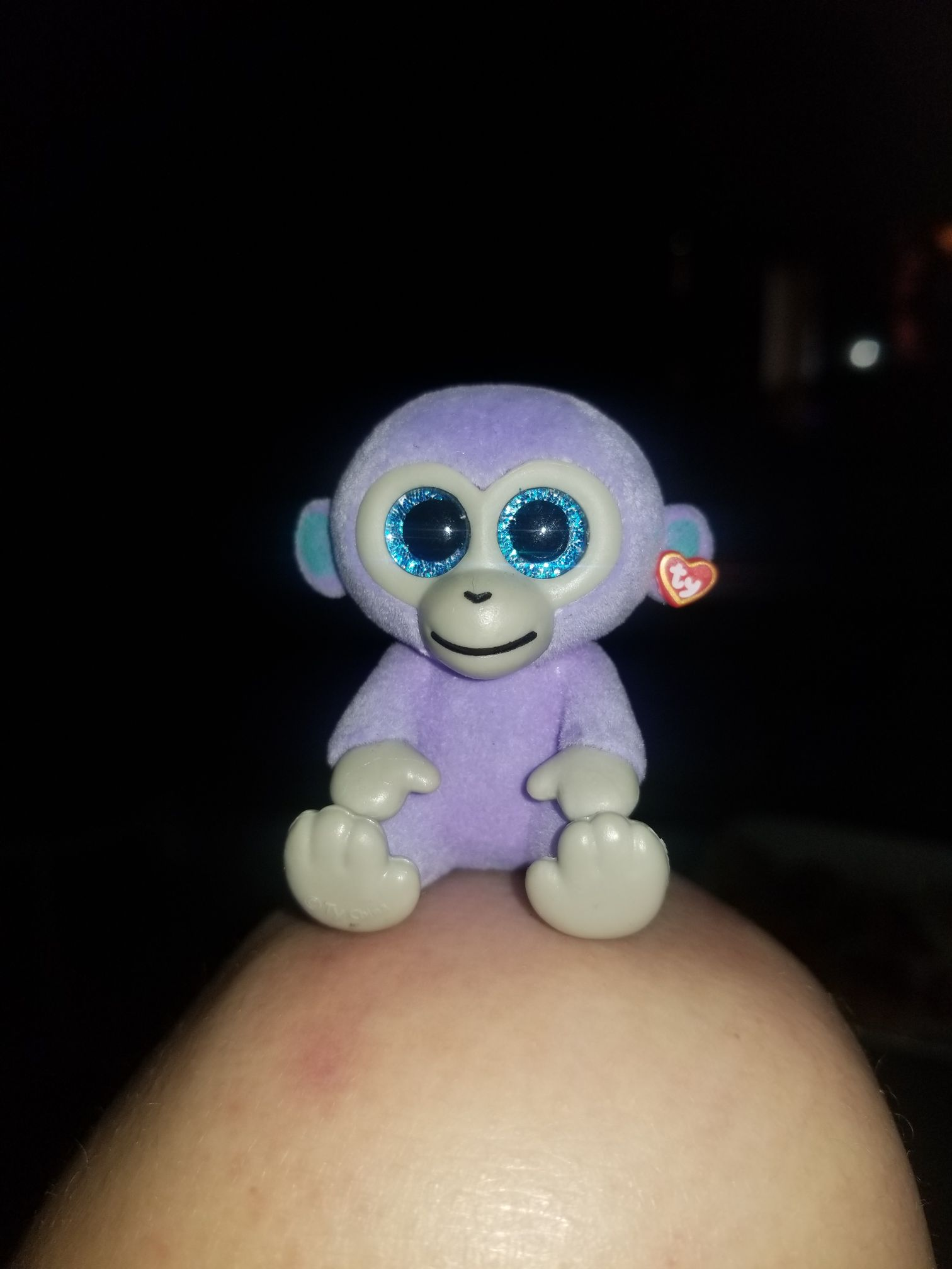 Blueberry Mini Boo Beanie Baby (25002) front image (front cover)
