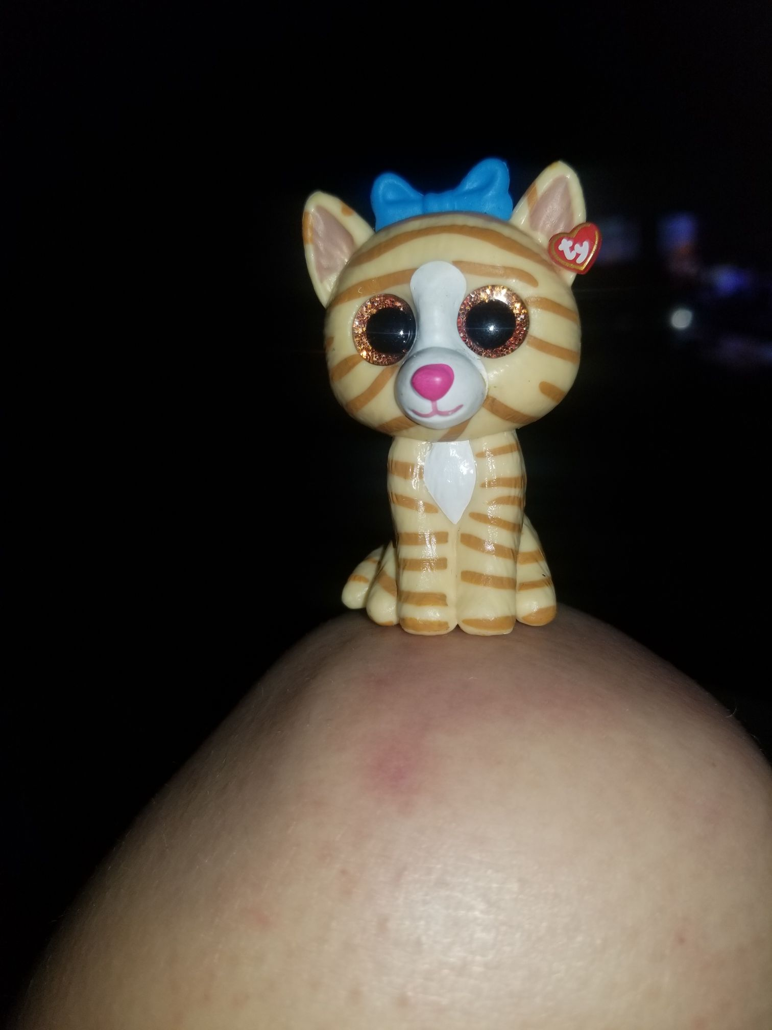 Tabitha Beanie Baby (25002) front image (front cover)
