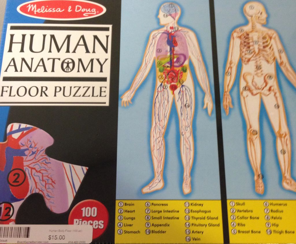 Human Anatomy Floor Puzzle Board Game front image (front cover)