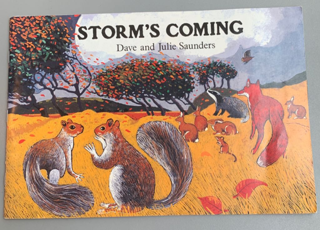 Storm's Coming Book front image (front cover)