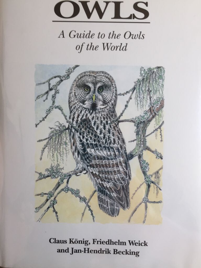 book report of owls in the View full weather report owls have long fascinated humans, who have for centuries seen them as symbols of good and bad: wisdom and now they're the subject of a new book, owl: a year in the lives of north american owls (braided river/mountaineers books, 217 pages, $3495) by wildlife.