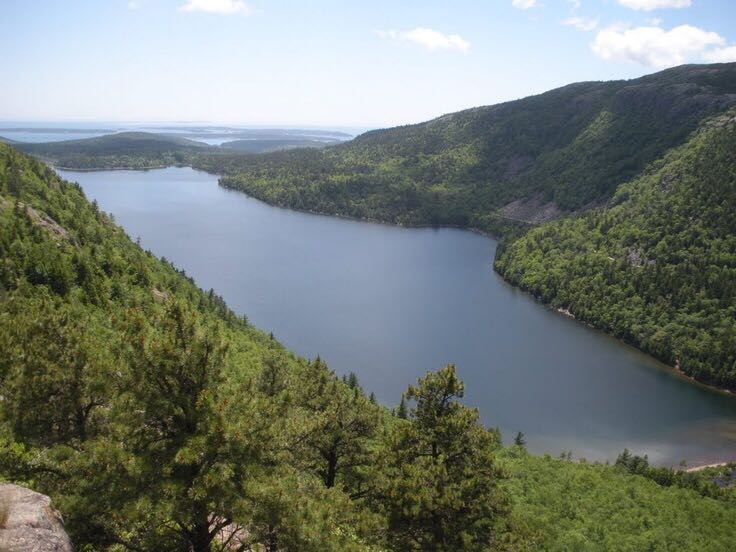 Acadia National Park - Maine Disneypin back image (back cover, second image)