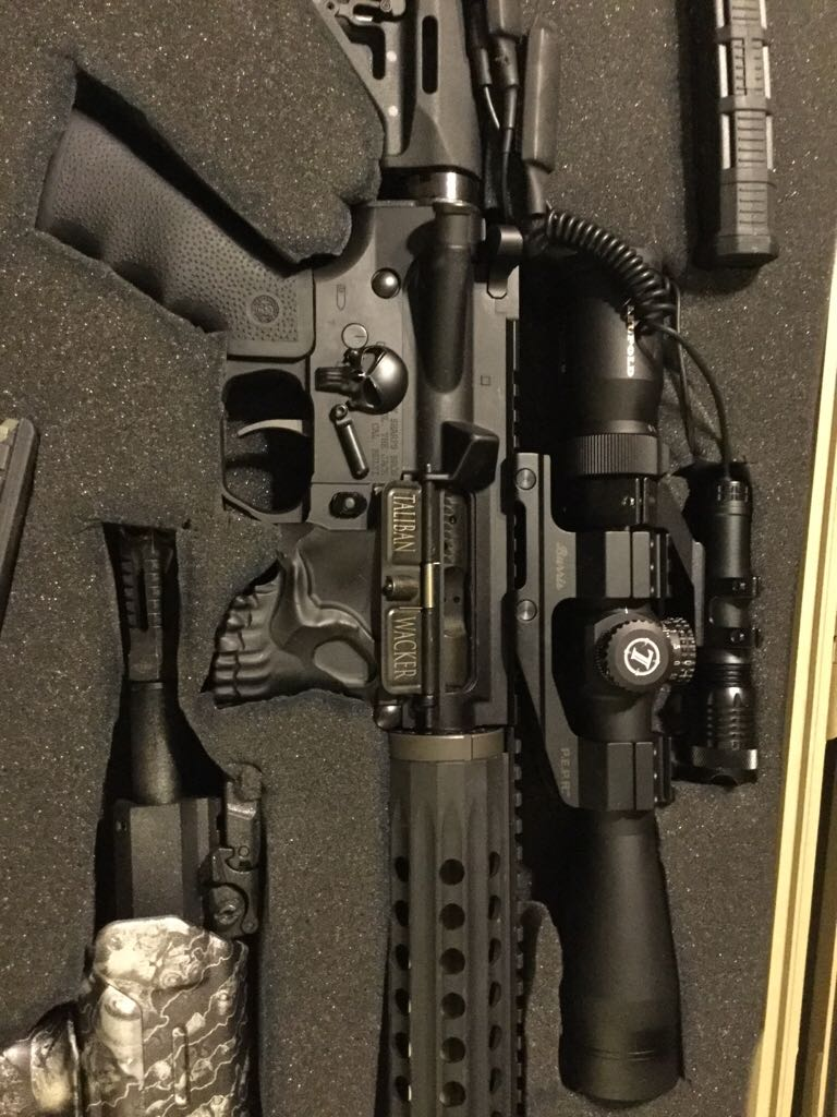 Spikes Tactical Ar15 Gun - Spikes Tactical (Semi-automatic Rifle) front image (front cover)