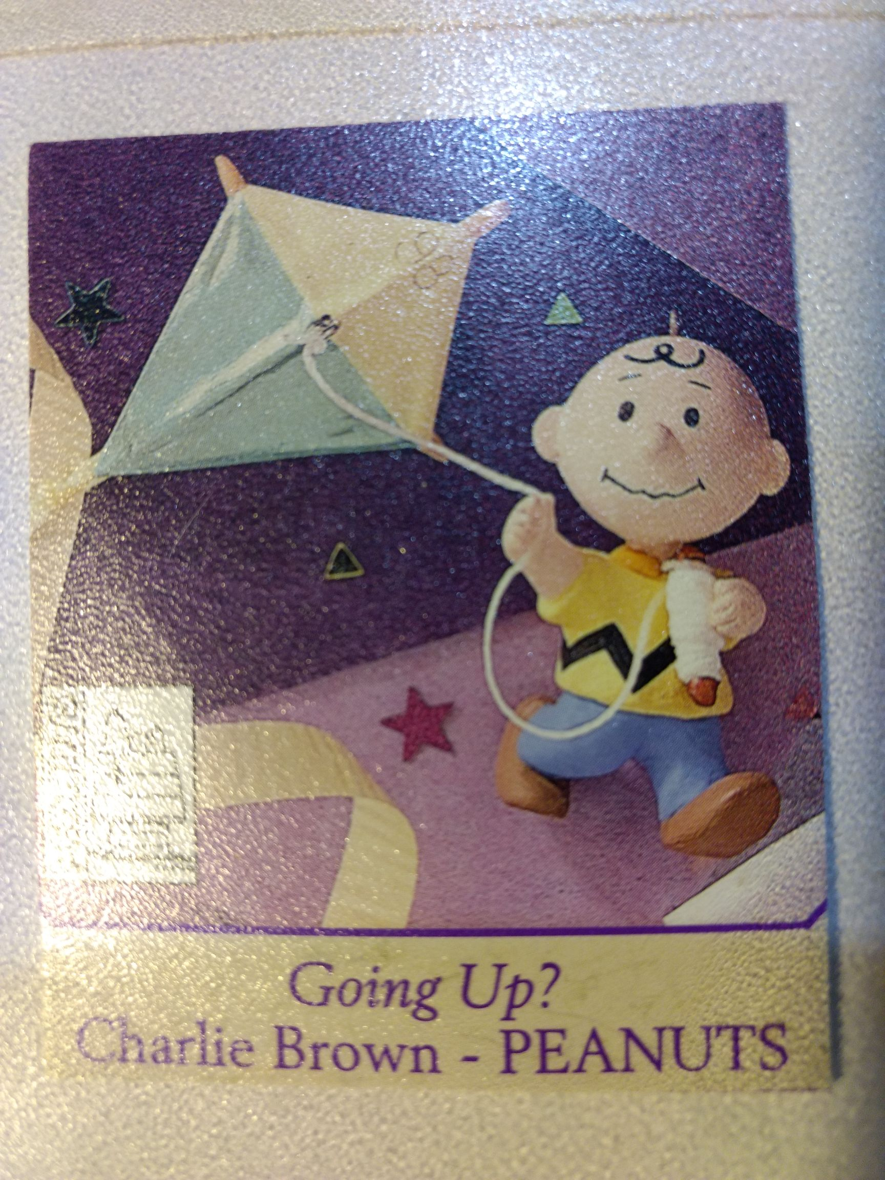 Peanuts Gang - Charlie Brown - Going Up? Ornament - Hallmark front image (front cover)