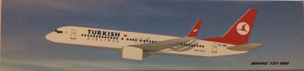 Turkish Airlines B737-800 TC-JGM Plane - Boeing (Boeing 737-800) front image (front cover)